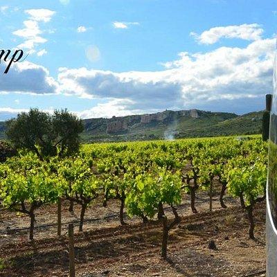 Visite de la Provence en Mercedes-Benz Sprinter 16 places