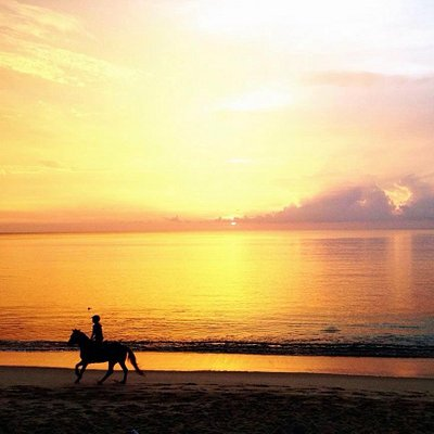 Summer is coming, seeing sunset on horseback on the beach is recommended , what are you waiting