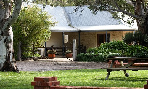Turkey Flat Vineyards - situated in beautiful picnic grounds.