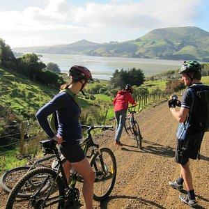 Otago Peninsula Top 10 in the world