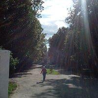 часовню поставили в честь 900-летия Рязани в Соборном парке