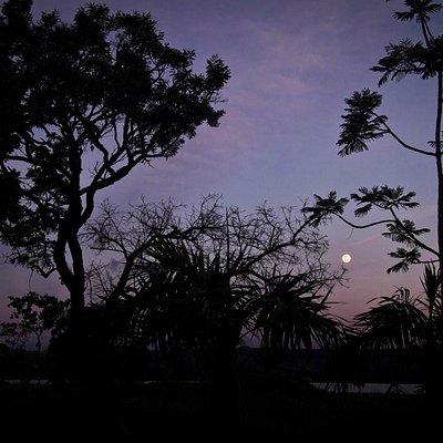 Moonrise at Parque Das Garcas