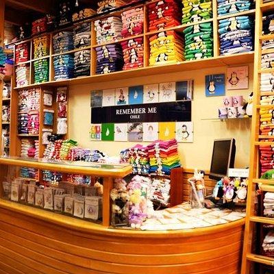Nuestra tienda. Puedes ver en ella nuestros polerones, poleras, chapitas, magnetos, tazones