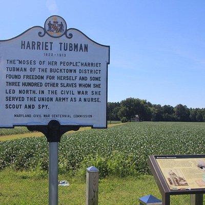 Harriet Tubman Birthplace Marker