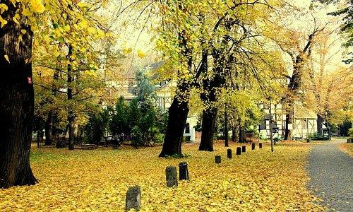 przepiękna jesień