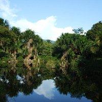 Tambo Ilusion's precious fresh water lagoon - Tarapoto - Peru