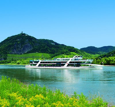 "Eventship MS RheinFantasie in front of the ""Drachenfels"" / dragon´s cliff"