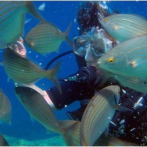 Rodos Dive Center