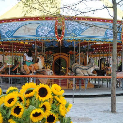 A view of the Greenway Carousel on opening day.