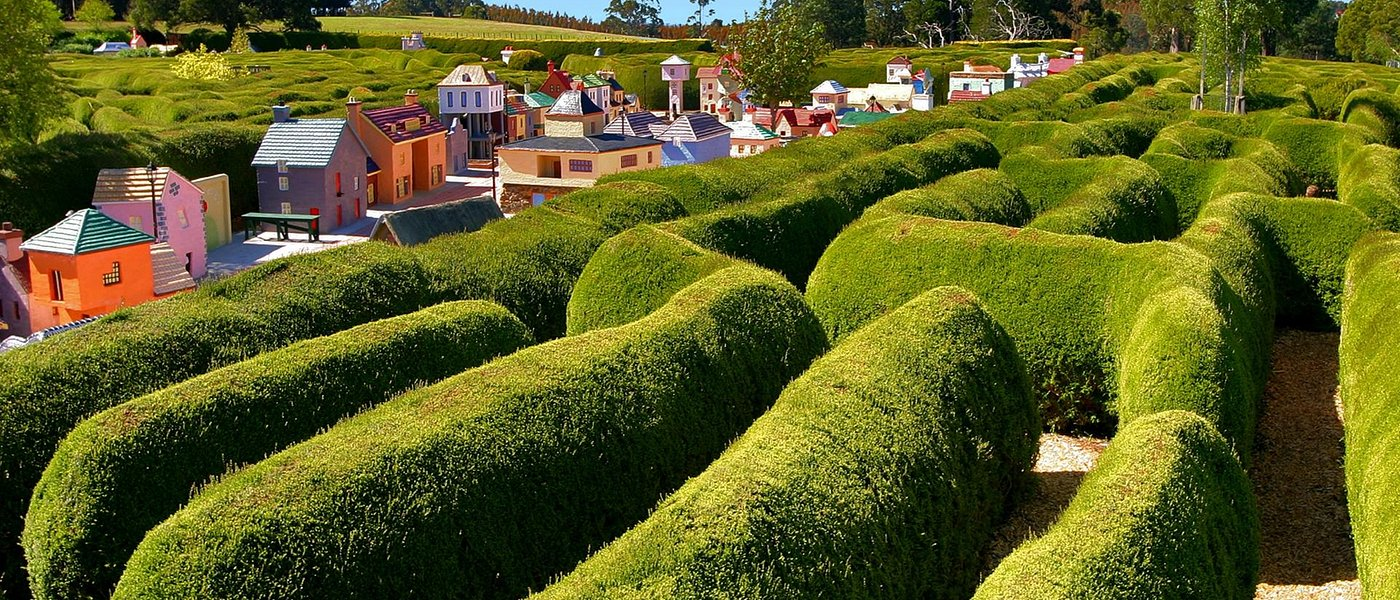 Confusion Maze and the Village of Lower Crackpot