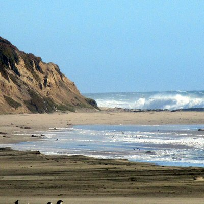 Waddell State Beach, Santa Cruz, Ca