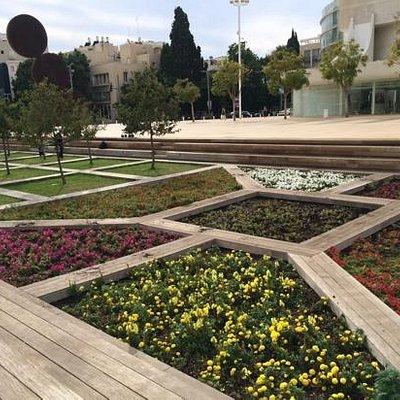 Lovely spacious garden