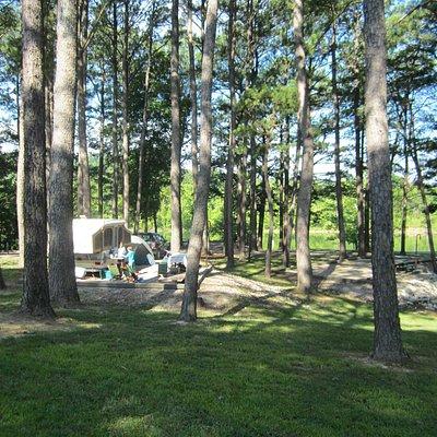 campsite at Dog Creek