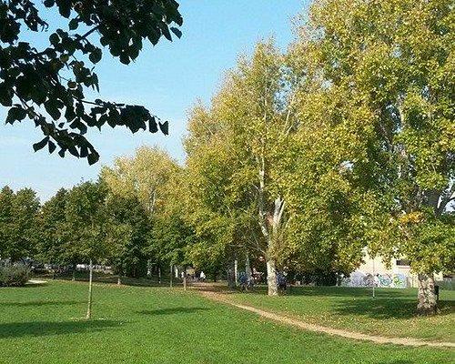 Viale del Parco Lunetta Gamberini
