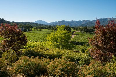 St Helena has the most beautiful views of the Napa Valley