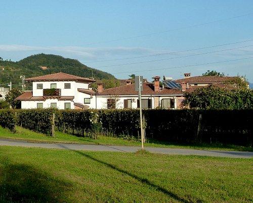 Azienda Agricola Mauro Drius