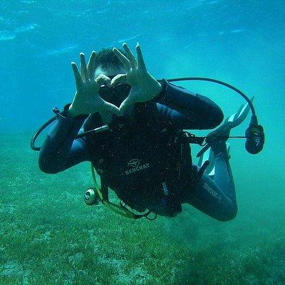 I love diving 1