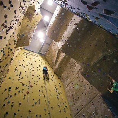 Rock Solid Climbing Wall  |  Brookes Sport - Headington, Oxford