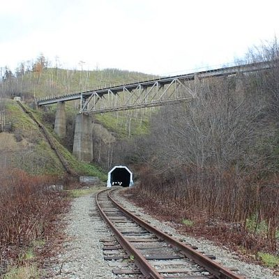 вход в туннель и выход на мост