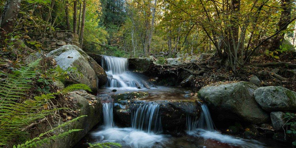 Parque Natural del Montseny (Vallès Oriental, Catalunya)