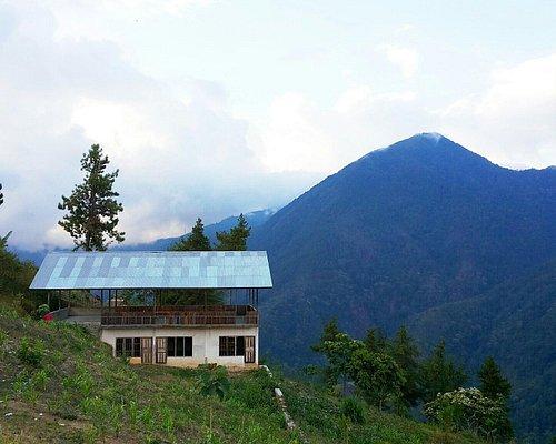 Pemandangan gunung hijau