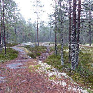 The trails leading to the lake are marked with red