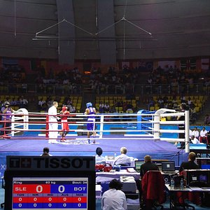 The arena and the boxers.
