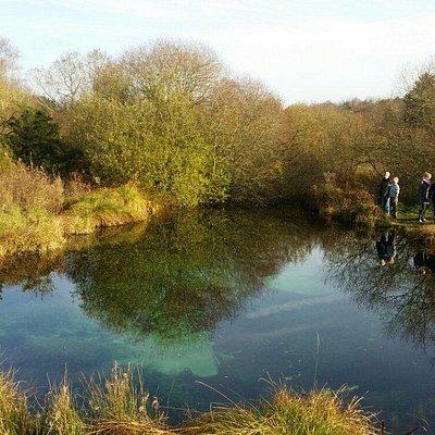 fin lille sø med meget rent vand ..En lille gåtur fra landevej . Evt gummistøvler eller andet fo