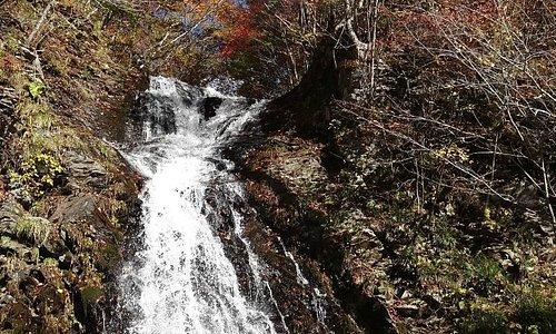峠の茶屋の白滝
