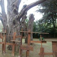 jardin museo con valla diseño