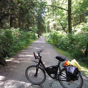 The trail beside Hyde Creek