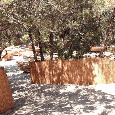 panoramica della pinetina annessa al bar