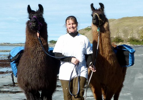 Lynn with two llama on one of the beaches