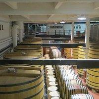 Wine made here