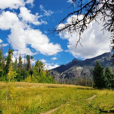 Fourmile Falls Trail