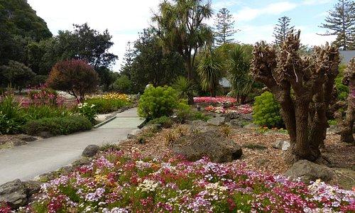 Centennial Garden in Napier