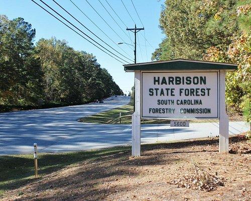 Broad River Road entrance, Harbison State Forest, November 2014
