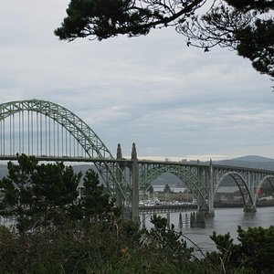 View of bridge from Yaquina Bay park