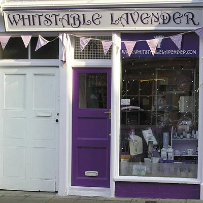 The smallest biggest lavender shop