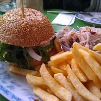 The mediterranian burger with normla fries and coleslaw