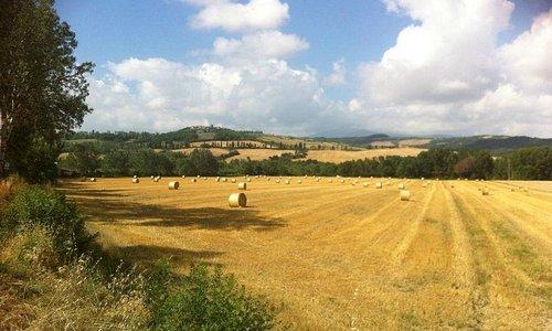 Valdorcia rolling hills