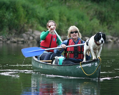 Every canoe should have a dog!