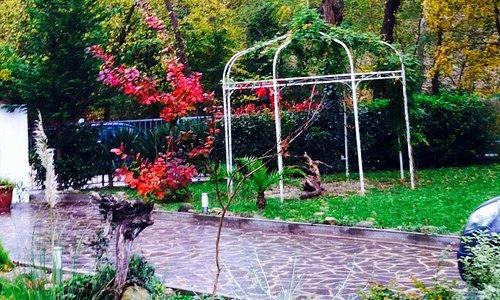 colorid'autunno
