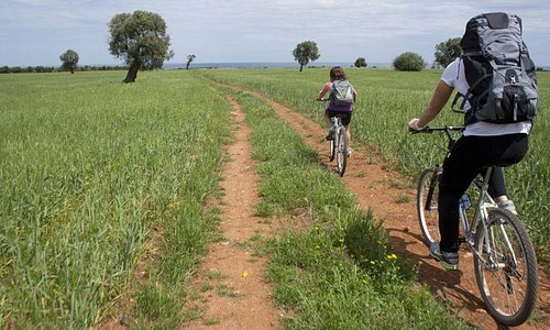 Bike Tour Parco Dune Costiere