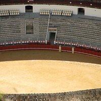 Beautiful Arena