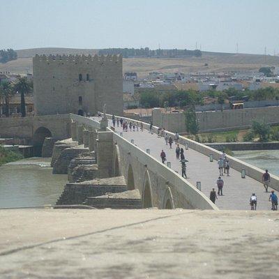 Vista global da ponte