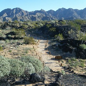 Trails near the visitor center.