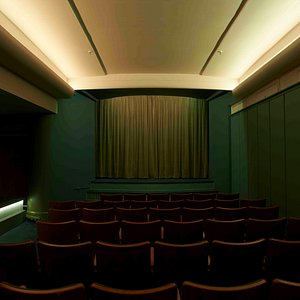 Golden Age Cinema and Bar - Screening room