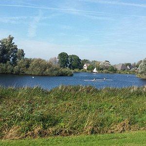 Sunday walk in the Westerveldsebos