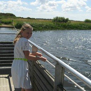Anna på 10 år trækker trækfærgen over Skjern Å